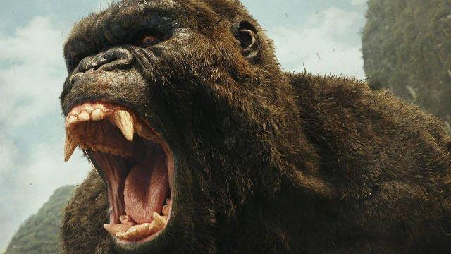 Kong Monsterverso Legendary Nueva Película SOn of Kong