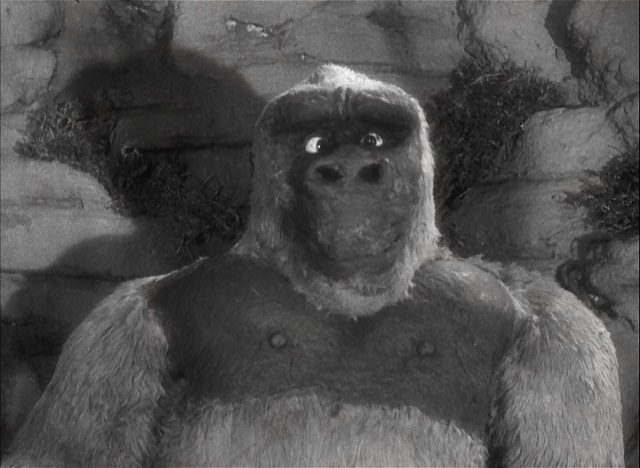 Kong Película El Hijo de Kong Son of Kong L
