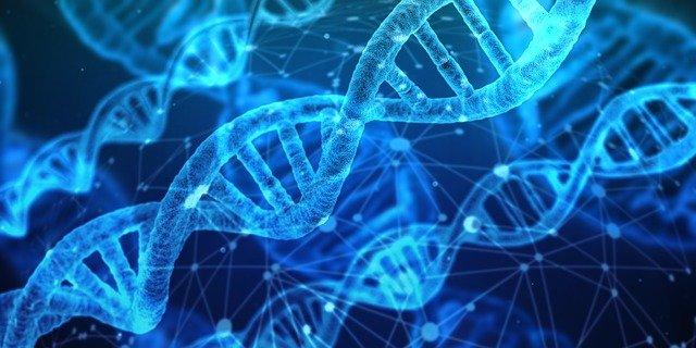 cientificos analizaron genoma de personas con depresion