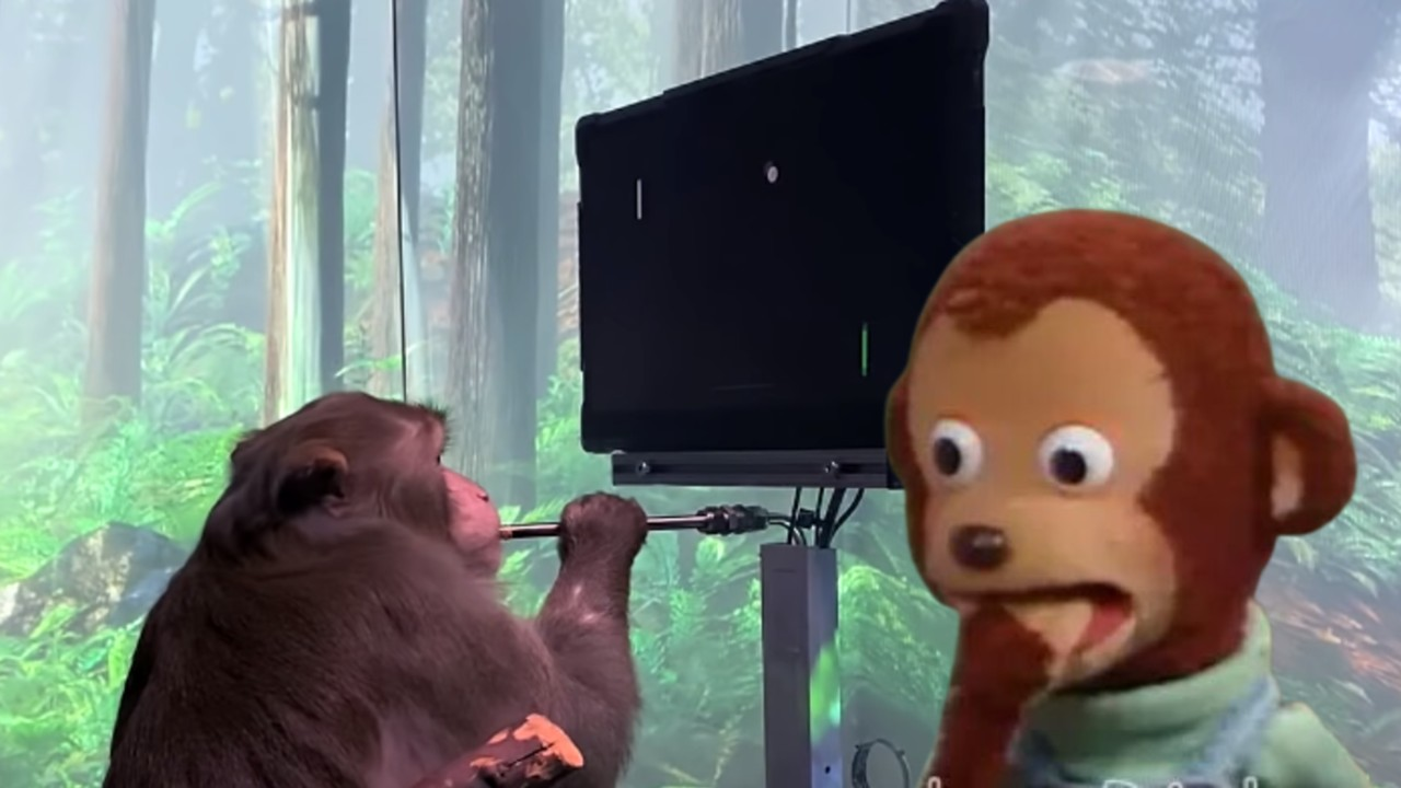 En neuralink lograron que un mono jugara videojuegos con la mente