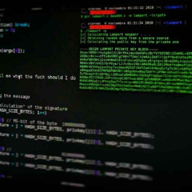 hackeo declaranet mexico gobierno federal
