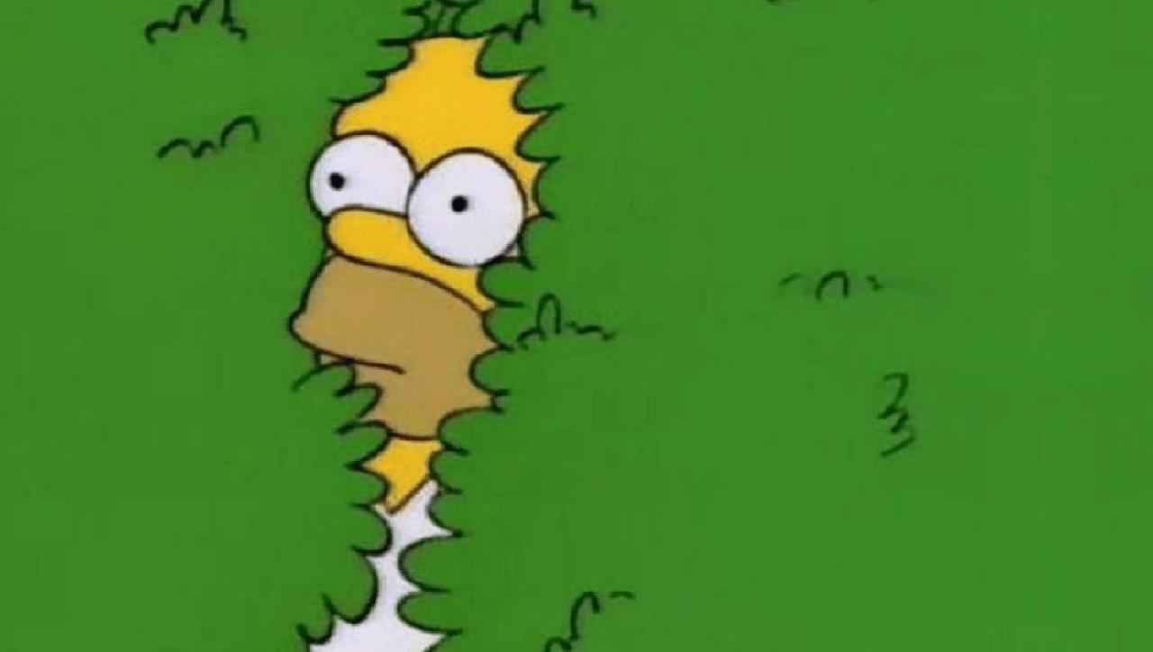 personajes de los simpson arbusto