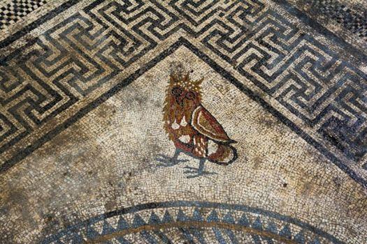 Imagen de un búho/lechuza en el mosaico.