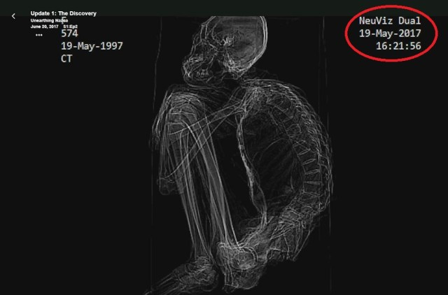 Momia que ha sido llamada «María» y que fue presentada como una evidencia extraterrestre. No podemos dejar de notar un «extraño» parecido con el esqueleto de un primate modificado en algunas partes.