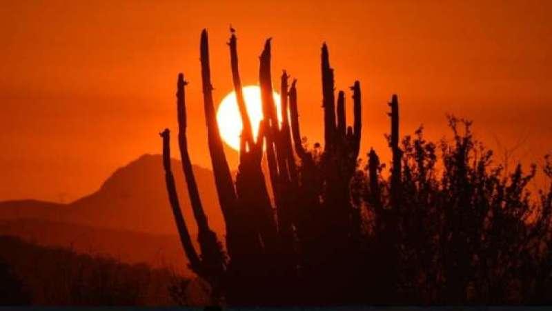 Calor extremo en Sonora