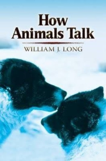 Libro «How Animals Talk» del William Long