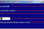 NumericUpdown and LinkLabel Example