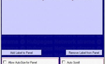 C# Panel Container Control Example