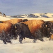 Yellowstone Thunder