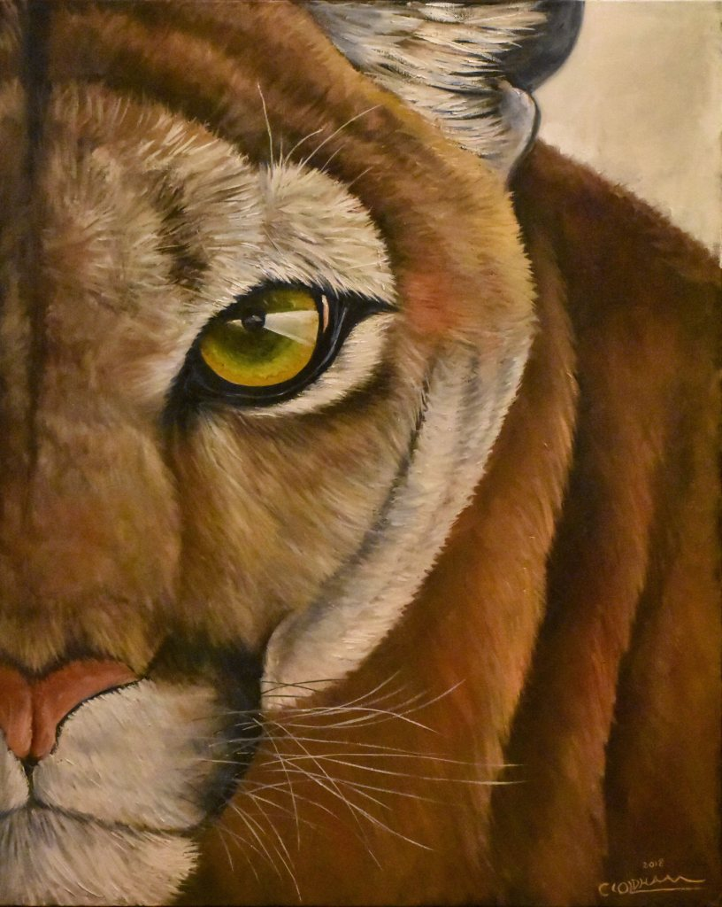 Oil painting of close-up portrait of a mountain lion or cougar by Cody Oldham