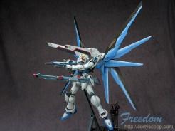 freedom0134