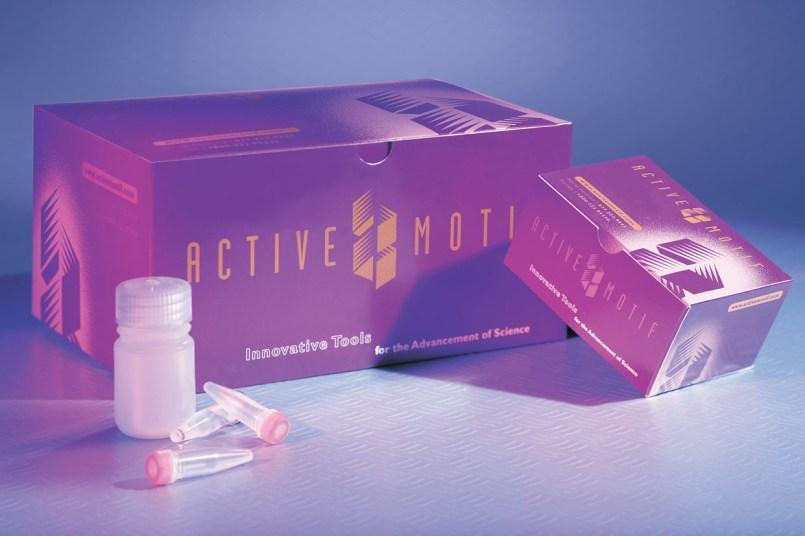 Active Motif