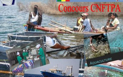 CONCOURS   CNFTPA