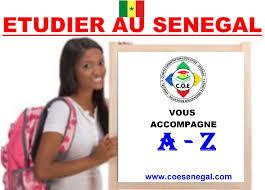 Études supérieures au Sénégal : le nouveau bachelier se cherche