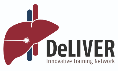 Logo for DeLIVER Innovative Training Network