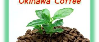 沖縄産コーヒー