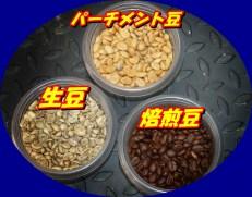 コーヒー豆種類
