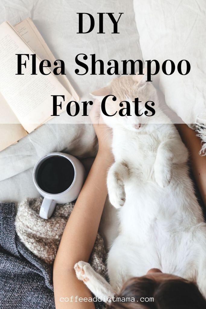 DIY Flea Shampoo For Cats