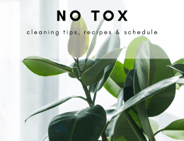 no tox cleaning tips
