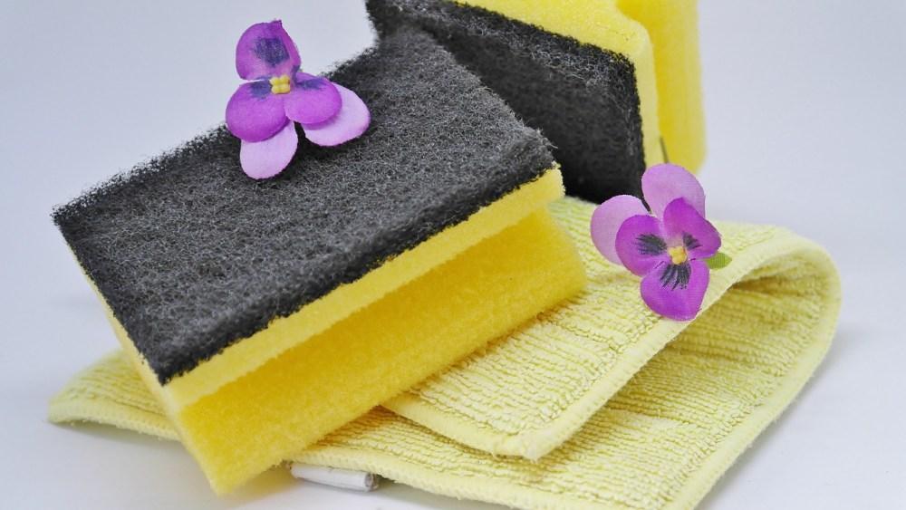 Kitchen Sponge Health Dirty