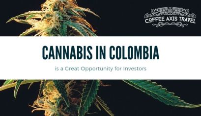 Cannabis in Colombia
