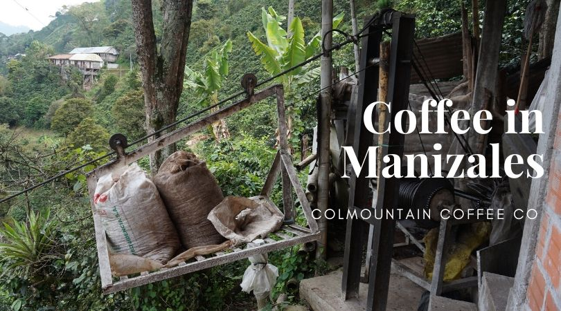 Coffee in Manizales With Passion and Quality