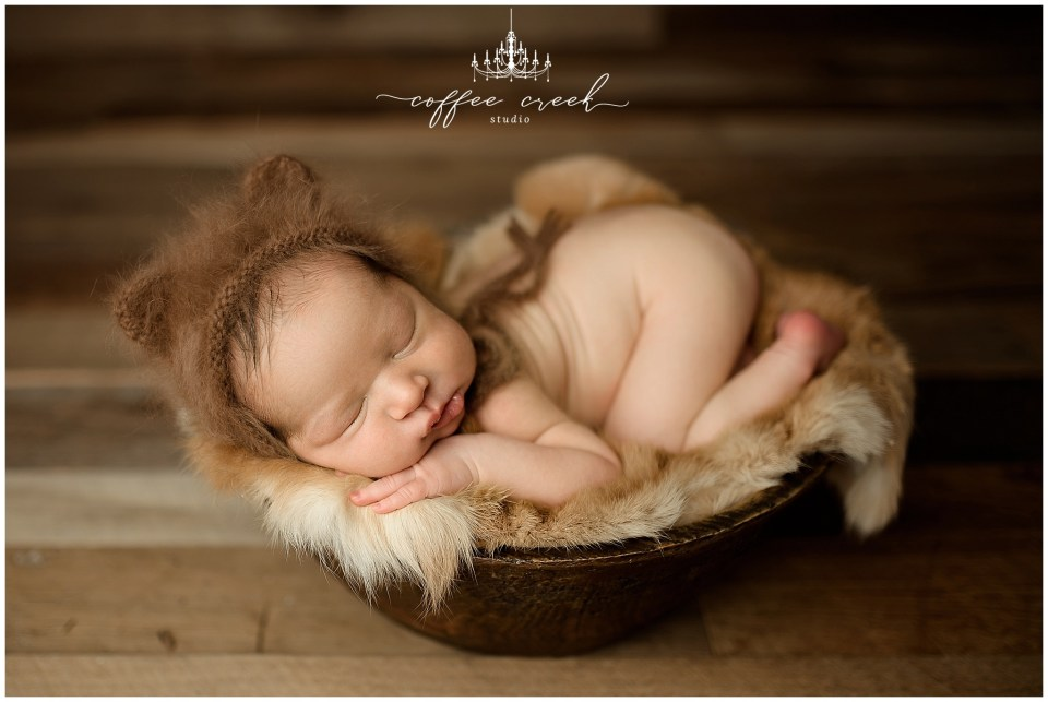 newborn baby boy in bowl with brown ears online newborn workshop model