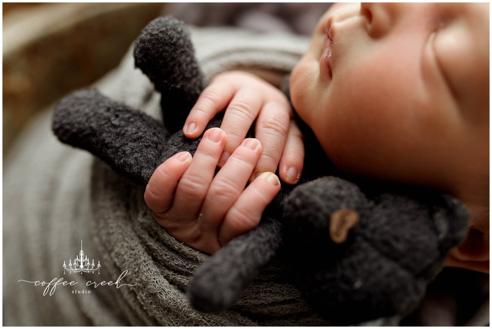 Indianapolis newborn photographer baby boy hands with bear