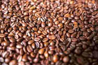¿Cómo se descafeinó el café?