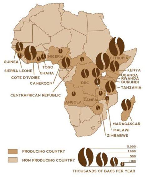 Carte des principaux pays producteurs/exportateurs de café en Afrique