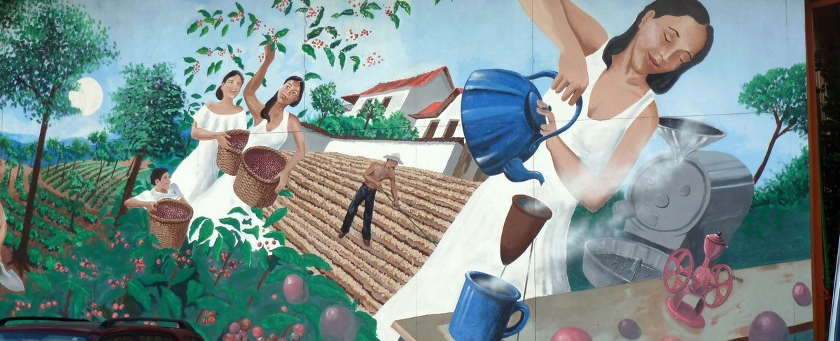 Coffee producing countries: Central America and the West Indies