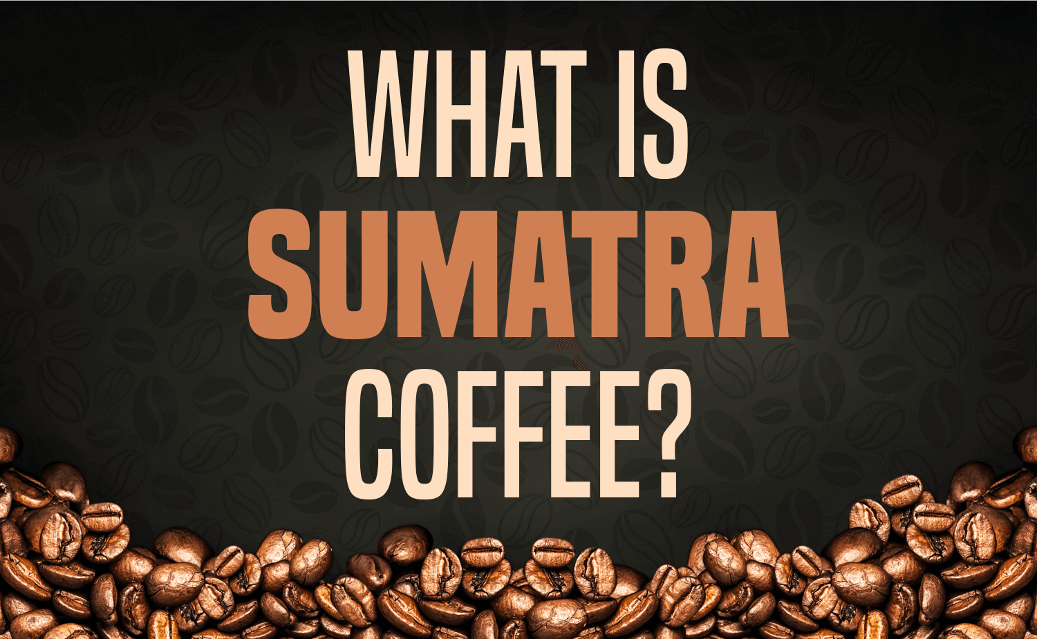 What is Sumatra Coffee?