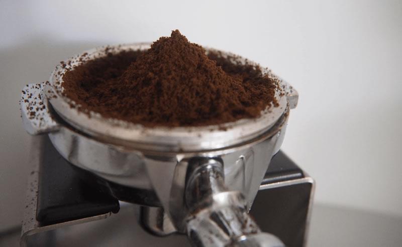 Will Coffee Grounds Deter Slugs? 1