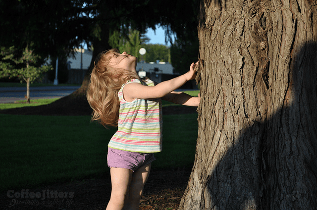 gem and the tree