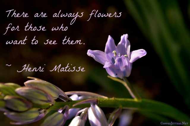 flower with matisse quote