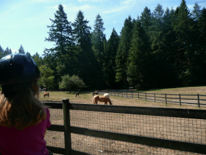 pony ride at Farrel-McWhirter Farm Park