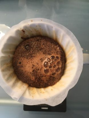Brewing on the V60