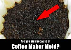 Guide to Clean a Moldy Coffee Maker