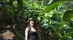 Mallika in banana tree plantation