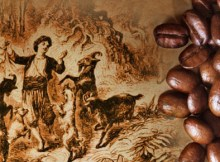 the history of the coffee bean