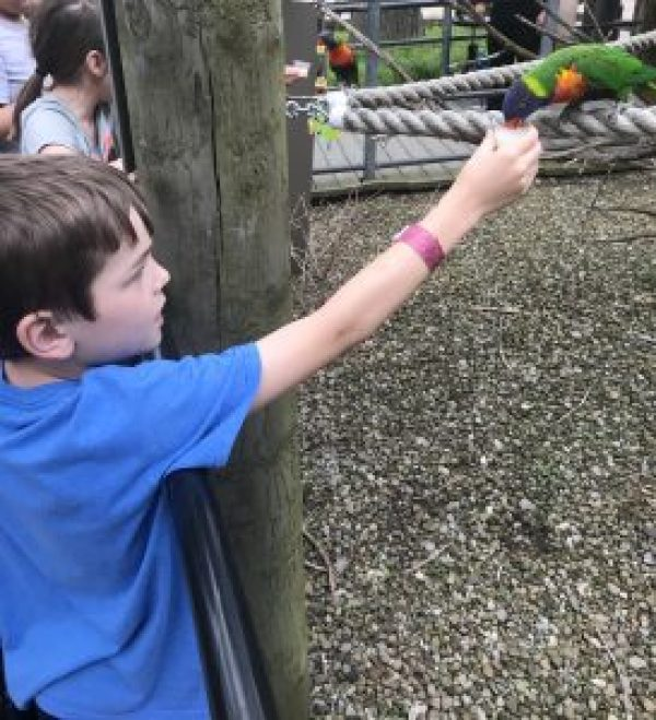 Cleveland Metropark Zoo Experiences