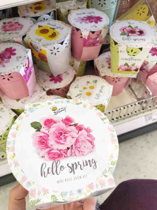 Inexpensive spring garden decor #easter #springflowers #target