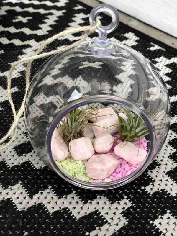 how to make a terrarium diy #instructions #plants #easy #inexpensive