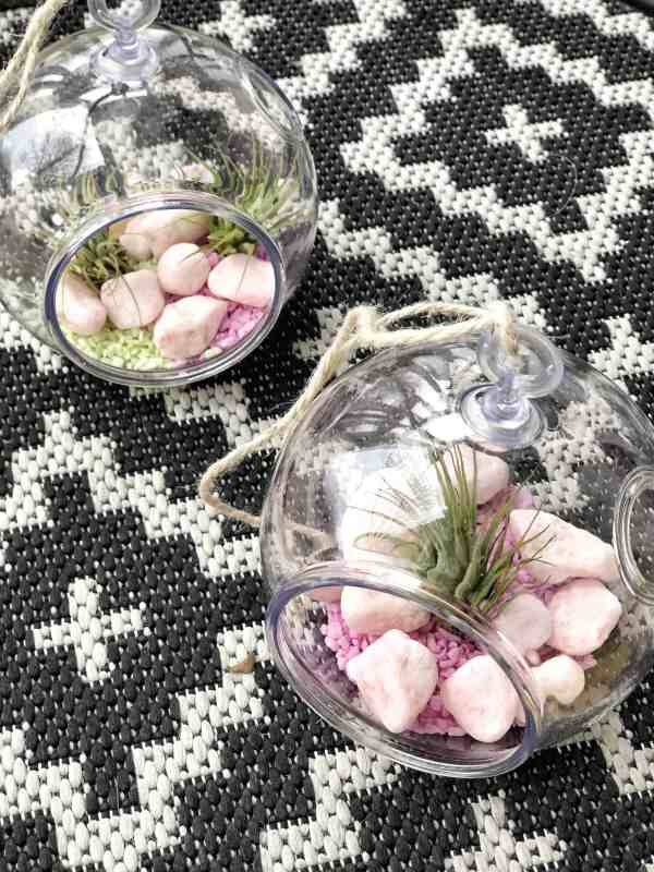 The Easiest Mini Terrarium DIY #inexpensive #dollartree #airplants