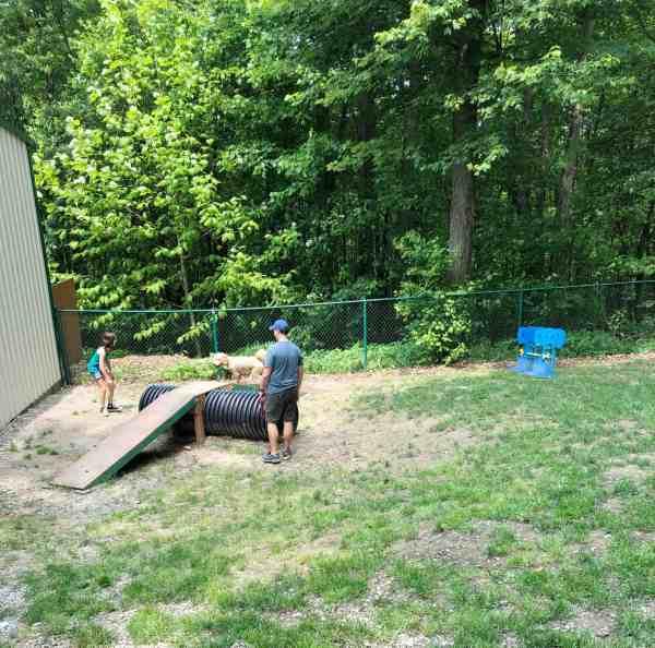dog park at kozy rest