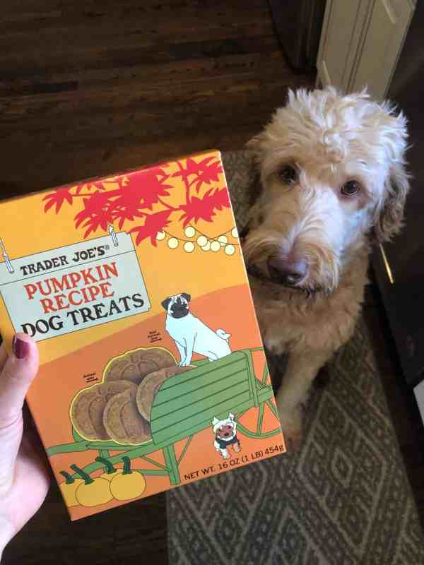 Trader Joe's Fall Treats #printable #pumpkins #shoppinglist