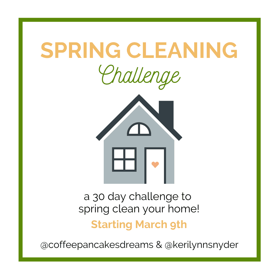 2020 Spring Cleaning Challenge