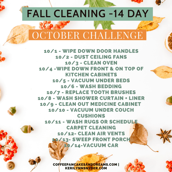 Fall Cleaning Checklist #challenge #easy #14days