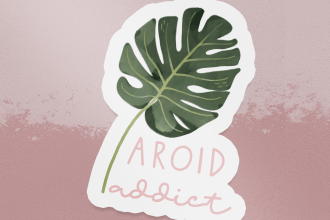 Aroid Addict - Monstera Deliciosa Sticker