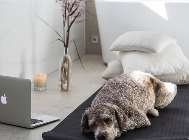 Yogaia jooga kokemuksia tarjous blogi-2